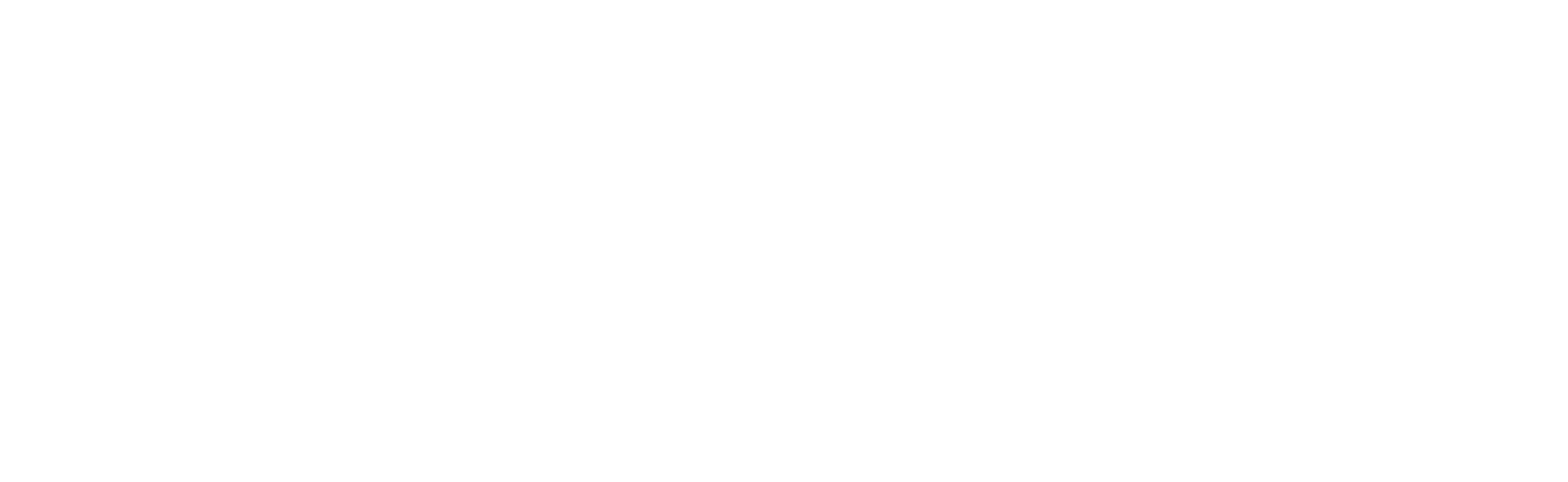 imaginereporting-logo-and-text